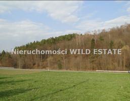 Działka na sprzedaż, Solina, 3000 m²