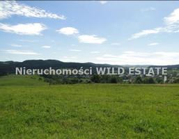 Działka na sprzedaż, Solina, 3267 m²