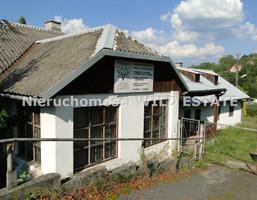 Lokal użytkowy na sprzedaż, Lesko, 490 m²