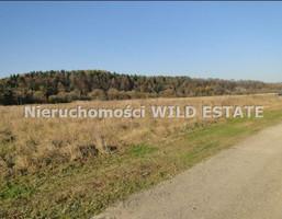 Działka na sprzedaż, Lesko, 3003 m²
