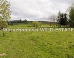 Działka na sprzedaż, Lesko, 3000 m²