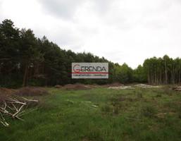Działka na sprzedaż, Sędziejowice Niecenia, 15500 m²