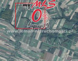 Działka na sprzedaż, Stanisławka, 13000 m²