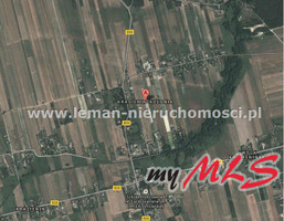 Działka na sprzedaż, Krasienin-Kolonia, 20500 m²