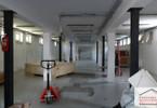 Magazyn, hala do wynajęcia, Cieszyn, 244 m²