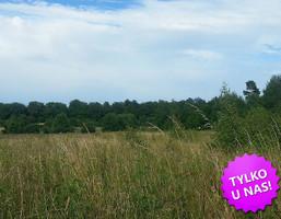 Działka na sprzedaż, Siadło Dolne, 74000 m²