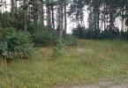 Działka na sprzedaż, Lipowo, 5800 m²