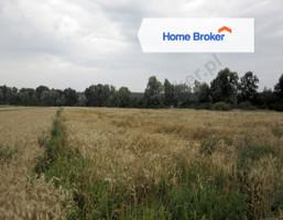 Działka na sprzedaż, Bieniowice, 18100 m²