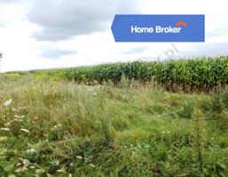 Działka na sprzedaż, Biała Podlaska, 600 m²