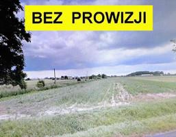 Działka na sprzedaż, Cedrowice, 42000 m²