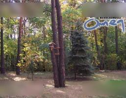 Dom na sprzedaż, Dąbrowa Górnicza, 222 m²