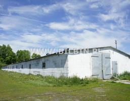 Działka na sprzedaż, Krzywe, 246677 m²