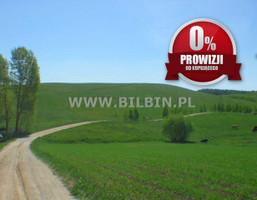 Działka na sprzedaż, Przejma Wielka, 138000 m²