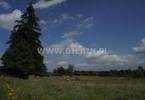 Działka na sprzedaż, Leszczewo, 50900 m²