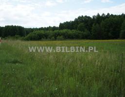 Działka na sprzedaż, Aleksandrowo, 3500 m²