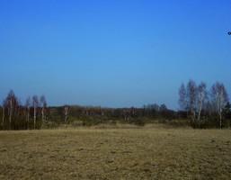 Działka na sprzedaż, Kotkowo, 8000 m²