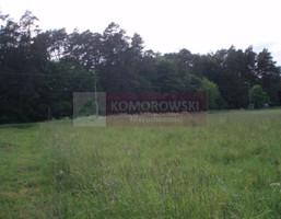 Działka na sprzedaż, Pniewo-Czeruchy, 8018 m²
