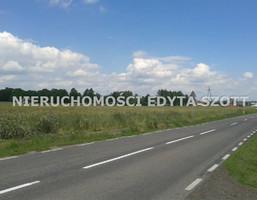 Działka na sprzedaż, Koźminek, 11300 m²