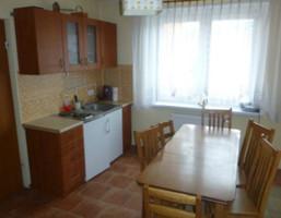 Mieszkanie na sprzedaż, Stronie Śląskie ul. Dolna, 45 m²