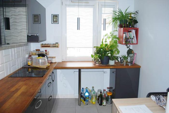 Mieszkanie do wynajęcia, Wrocław Os. Stare Miasto, 52 m² | Morizon.pl | 5169