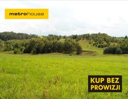 Działka na sprzedaż, Grabowska Huta, 12165 m²