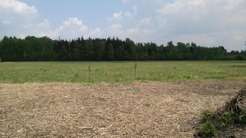 Działka na sprzedaż, Dąbrowa Górnicza Ratanice, 610 m² | Morizon.pl | 9219
