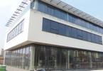 Lokal handlowy do wynajęcia, Dąbrowa Górnicza Centrum, 145 m²