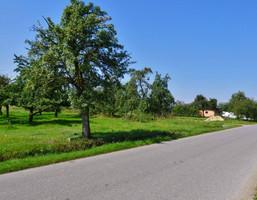 Działka na sprzedaż, Kuznocin, 2998 m²