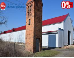Magazyn, hala na sprzedaż, Dębicz, 1025 m²