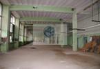 Obiekt do wynajęcia, Warszawa Praga-Północ, 1000 m²