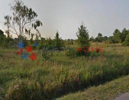 Działka na sprzedaż, Kolonia Gościeńczyce, 14000 m²
