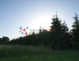 Działka na sprzedaż, Rusiec, 950 m²