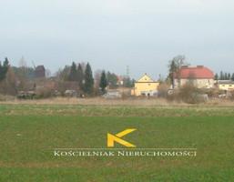 Działka na sprzedaż, Leśniów Wielki, 2592 m²