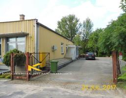 Lokal użytkowy do wynajęcia, Zielona Góra, 425 m²