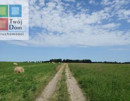 Gospodarstwo rolne na sprzedaż, Barwice Gmina Barwice, 170200 m²