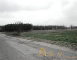 Działka na sprzedaż, Żuków, 6300 m²