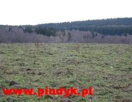 Działka na sprzedaż, Kopaniec, 63000 m²