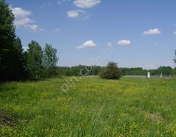 Działka na sprzedaż, Budy Mszczonowskie, 38988 m²