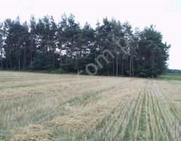 Działka na sprzedaż, Kurabka, 37377 m²