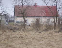 Dom na sprzedaż, Młodzieszyn, 110 m²