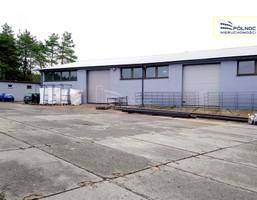 Komercyjne na sprzedaż, Pilica, 1300 m²