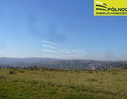 Działka na sprzedaż, Gnojnik, 10500 m²