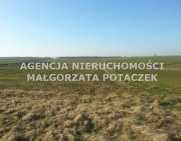 Działka na sprzedaż, Polanka Wielka, 2175 m²
