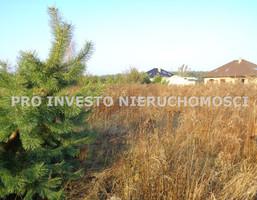 Działka na sprzedaż, Gruszczyn, 1209 m²