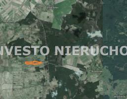 Działka na sprzedaż, Jarszewko, 56300 m²