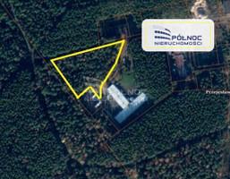 Działka na sprzedaż, Przejęsław, 9799 m²