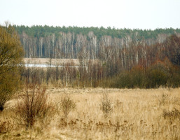 Działka na sprzedaż, Zgniłocha, 9500 m²