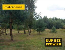 Działka na sprzedaż, Stara Dąbrówka, 3100 m²