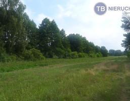Działka na sprzedaż, Ostrowo, 15000 m²