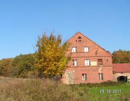 Gospodarstwo rolne na sprzedaż, Olszyna, 300 m²